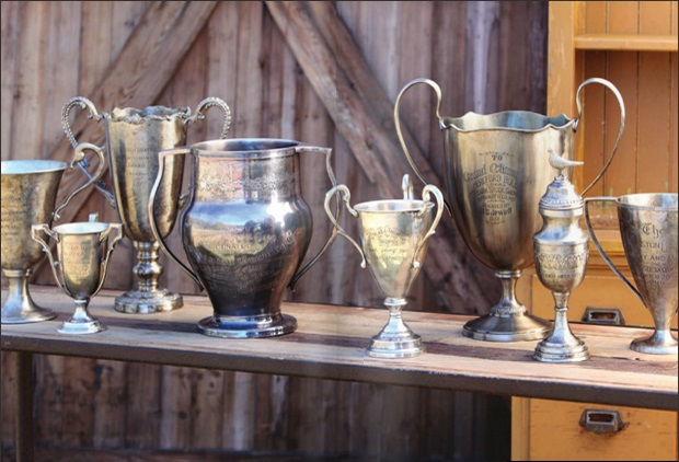 Shiny Trophies: The Importance of Awards For Your Business